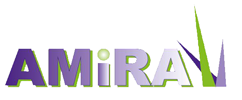 Logo de AMIRA